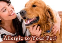 Allergic to Your Pet