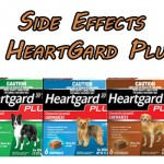 Side Effects of Heartgard Plus