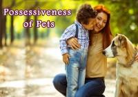 possessiveness-of-pets