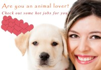 Hot Jobs for Pet Lovers