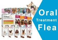Oral flea treatments for dogs