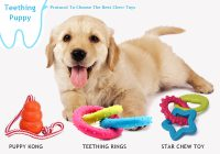 What Type of Chew Toys For Teething Puppies