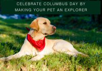 columbus day sales deals on pet supplies