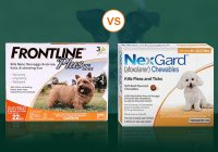 Most Compelling Product Nexgard Vs Frontline Plus