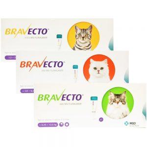 buy-bravecto-cats