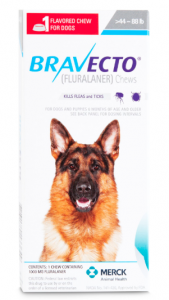 bravecto-for-dogs
