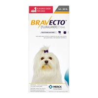 Bravecto-for-dog