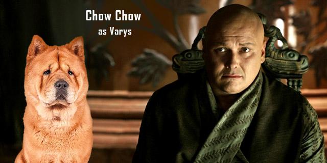 Chow-Chow-as-Varys