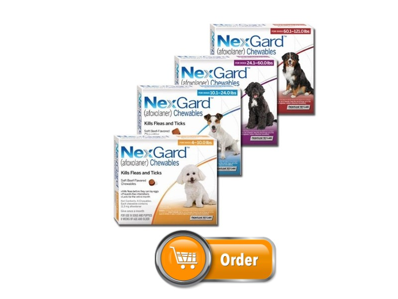 Nexgard for Dog