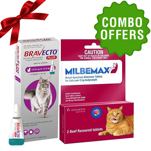 Bravecto Plus + Milbemax combo for cat
