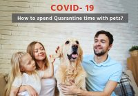COVID- 19