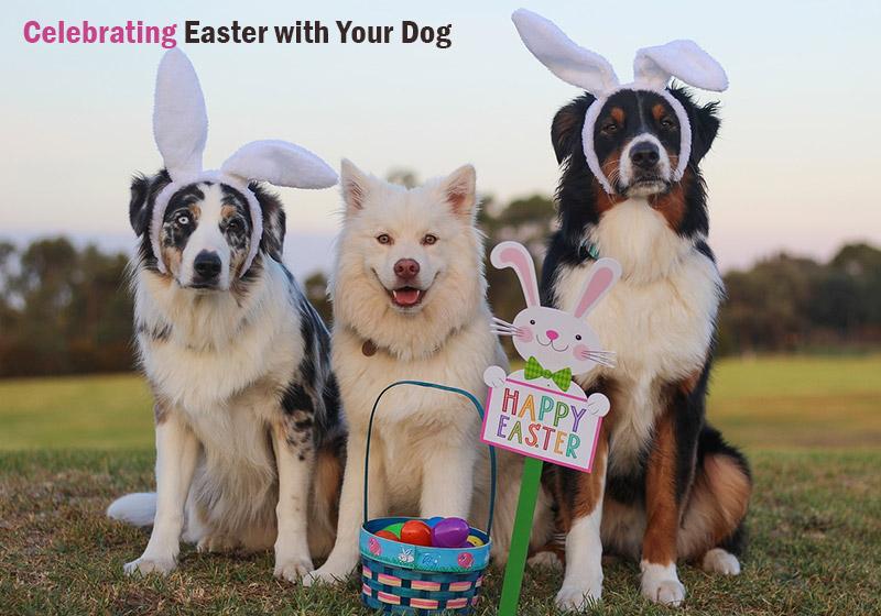 Easter blog BVC