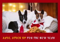 Celebrate New Year's Eve With Pets