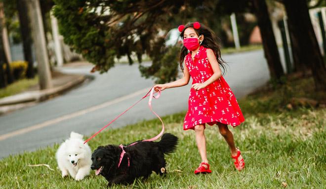Regular Walk with Your Dog